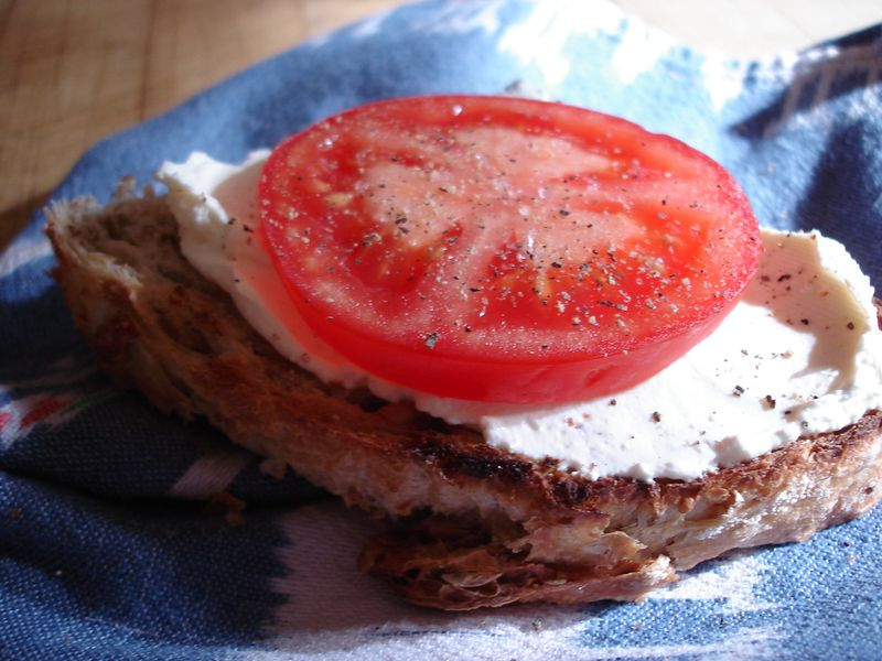 Fresh cheese with tomato on toast 2